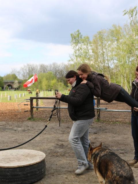 Die pferdegrundschule horsemanship kurs pony arche am rodenberg menschliches pferd
