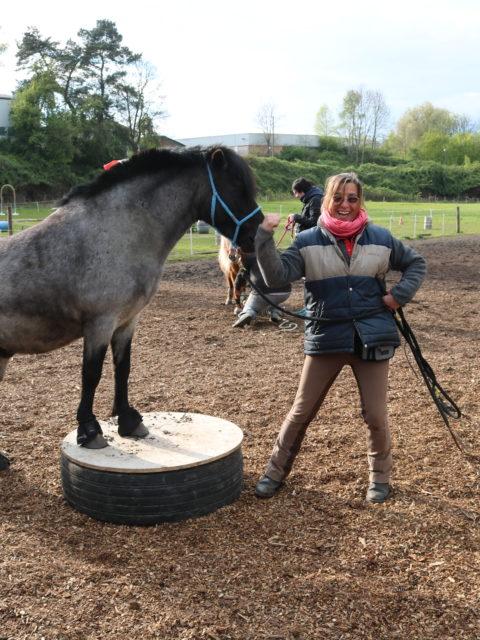 Die Pony-Arche am Rodenberg
