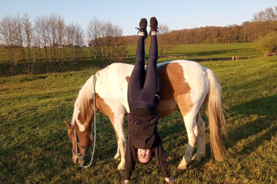 Pferdesport steht Kopf Corona die Pferde-Grund-Schule